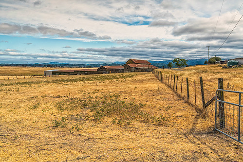 Petaluma farm 06-2013 -4 by joeeisner