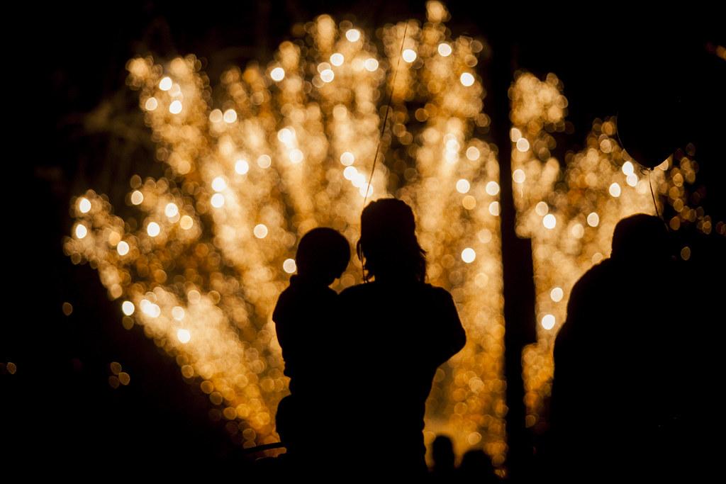 2013.07.03_ elkton fireworks _lemon-624