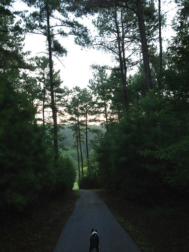 Virginia on her morning walk