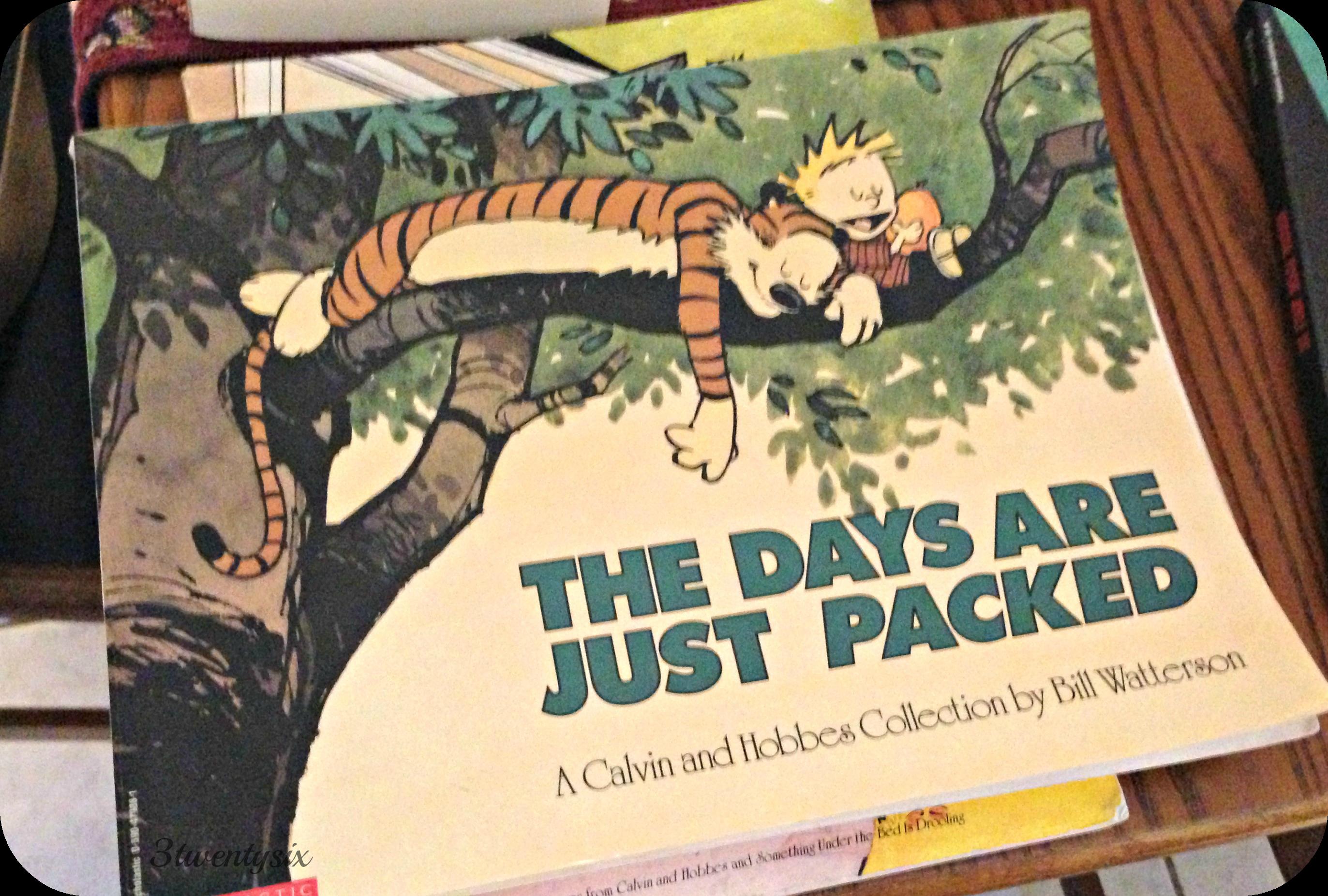 Calvin & Hobbes book
