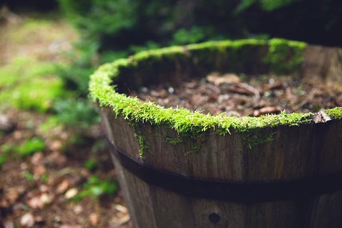 http://www.flickr.com/photos/44028103@N07/9673595608