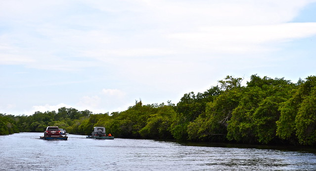 Traffic on the Mangrove Canal - Monterrico, Guatemala