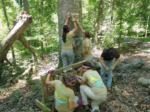 The Ohio River Foundation crewmembers Lydia Cook, Rose Guardino, Rose Johnson, Catherine Kagemann, Callie Schulenburg, and Brynne Taylor build a pollinator habitat. USFS Photo.
