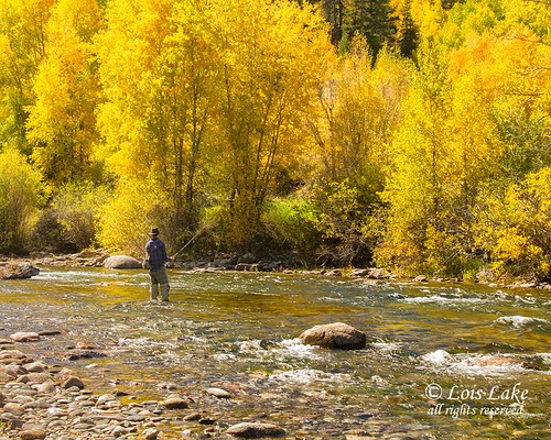 Autumn on the Blue River