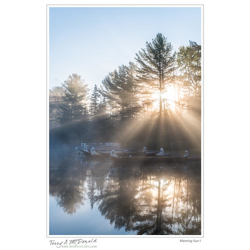 morning ontario canada nature sunrise landscape dawn scenery sjk timing canadianshield nikond800e barklakeleadershipoutdoorcentre 2485nikkorafsvrii mindenhillsirondale borealshield stjohnskilmarnockschool