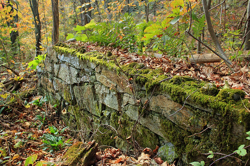 Appalachian Trail: Totts Gap to Mount Minsi (4)