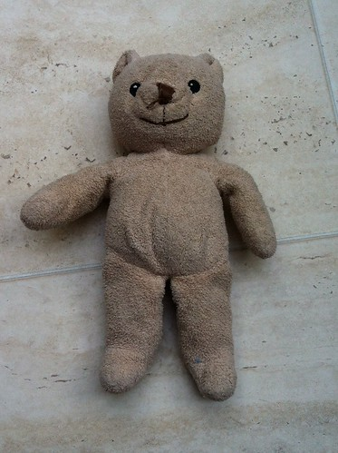 Undressed teddy