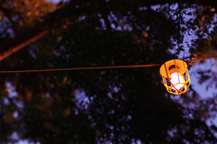 Hanging Park Light