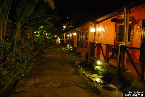 夜晚的莫內花園