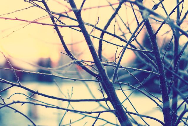 IMG_4960_Fotor