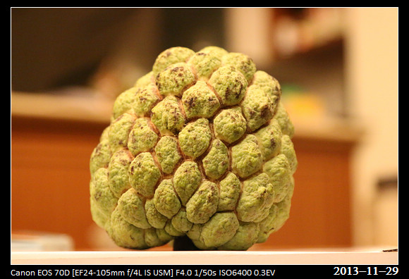 20131129_Fruit