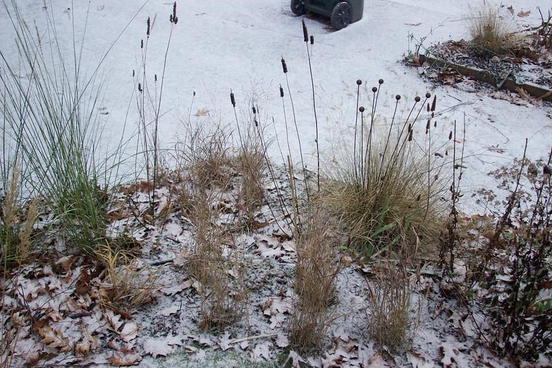 cheyenne sky plantingi n snow  3723