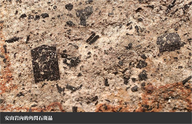 安山岩內的角閃石斑晶