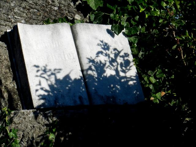 Wien_Döblinger Friedhof_2013_1