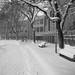 winter at the university by torobala