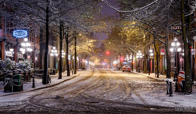 Abbott Street Snow