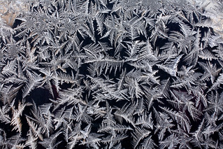 Frost on a car close-up