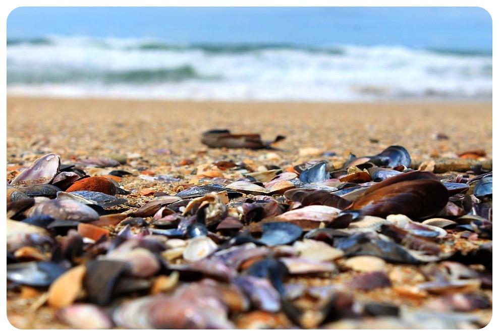 3 uruguay beach day