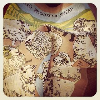 Vintage Linen New Zealand Breeds of Sheep Tea Towel.