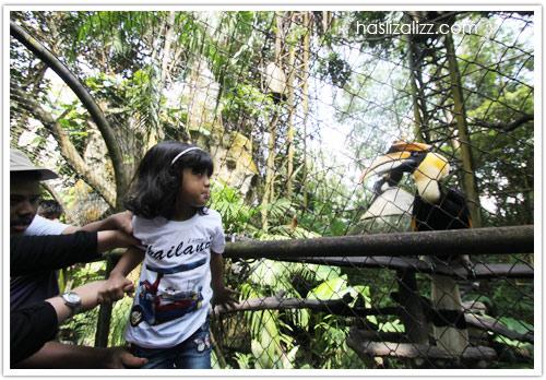 11713423463 1d5bf0fb82 o BERCUTI DI HATYAI THAILAND PART 6   songkhla Zoo