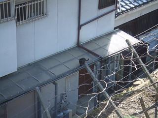 善光寺〜武田神社(1)