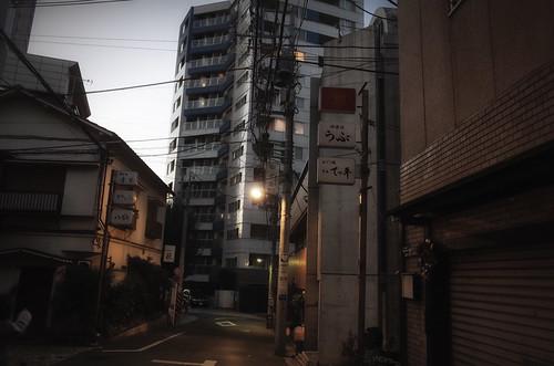 2014.01.26(R0014357LR_GR_Sunlight Contrast