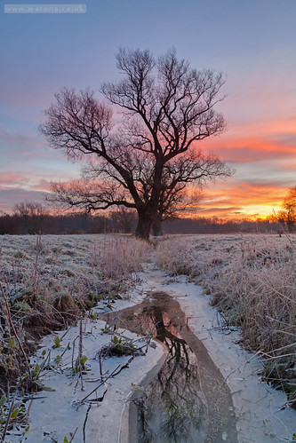 winter cambridge ice sunrise cambridgeshire grantchester