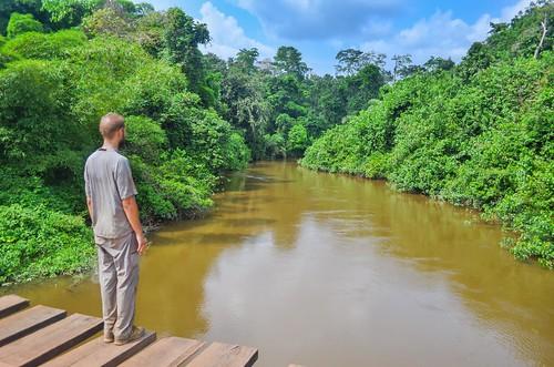 Pont dans la province de Lekoumou, Congo