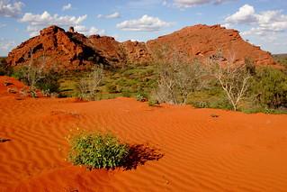 Where the Desert Meets The Ranges