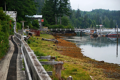Boardwalk in Winter Harbour, Quatsino Sound, Vancouver Island, British Columbia, Canada