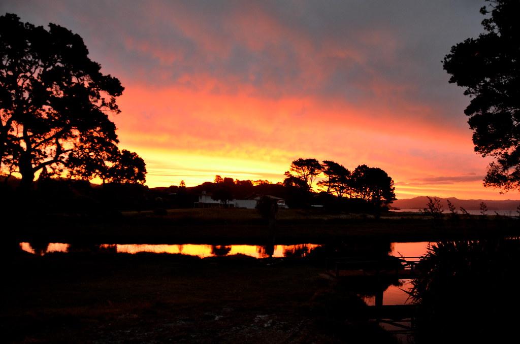 Coromandel, New Zealand