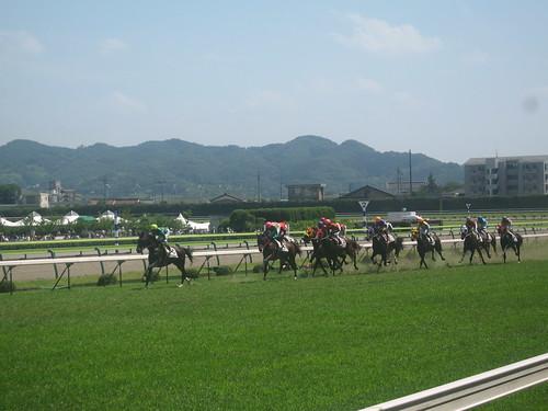福島競馬場の直線