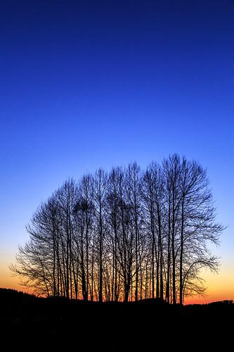 sunset sky sun color tree night canon evening sweden natur himmel nightshoot april sverige träd sörmland solnedgång landskap 2014 motljus nattfoto kväll siluett tystberga södermanland ef24105l södermanlandslän canon6d