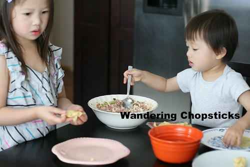 Hoanh Thanh Thit Heo Bam, Dau Hu, Hanh La (Vietnamese Wontons with Ground Pork, Tofu, and Green Onions) 8