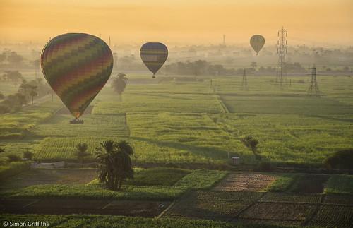 hot green simon lines sunrise balloons landscape power farm air hotair egypt aerial nile land electricity luxor griffiths simongriffiths