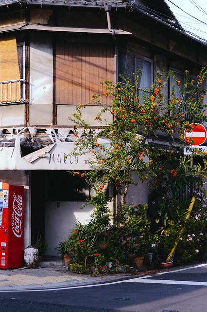 building being overtaken by plants, japan