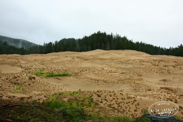 Sand Dunes near Cape Lookout