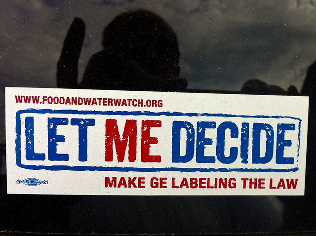 Photo:LET ME (Maine) DECIDE By:origamidon