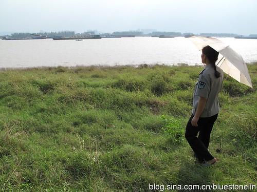 書唐山村可說是魚米之鄉,汙染後村里能搬走的都搬走了。