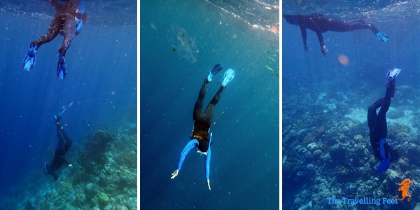 freediving training at moalboal