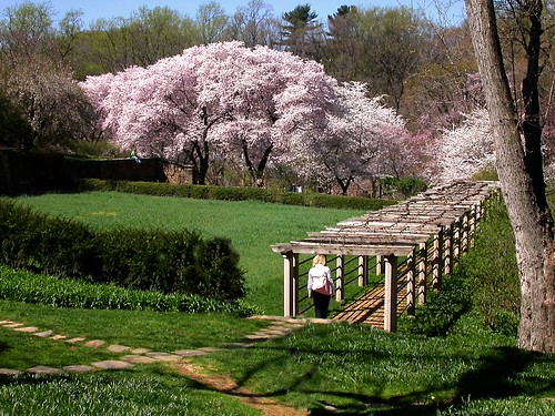 Dumbarton Oaks, Washington (by: John Weiss, creative commons)
