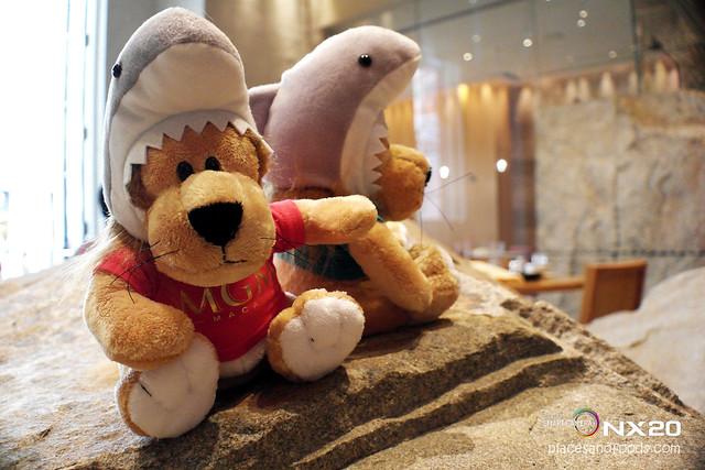mgm sharks