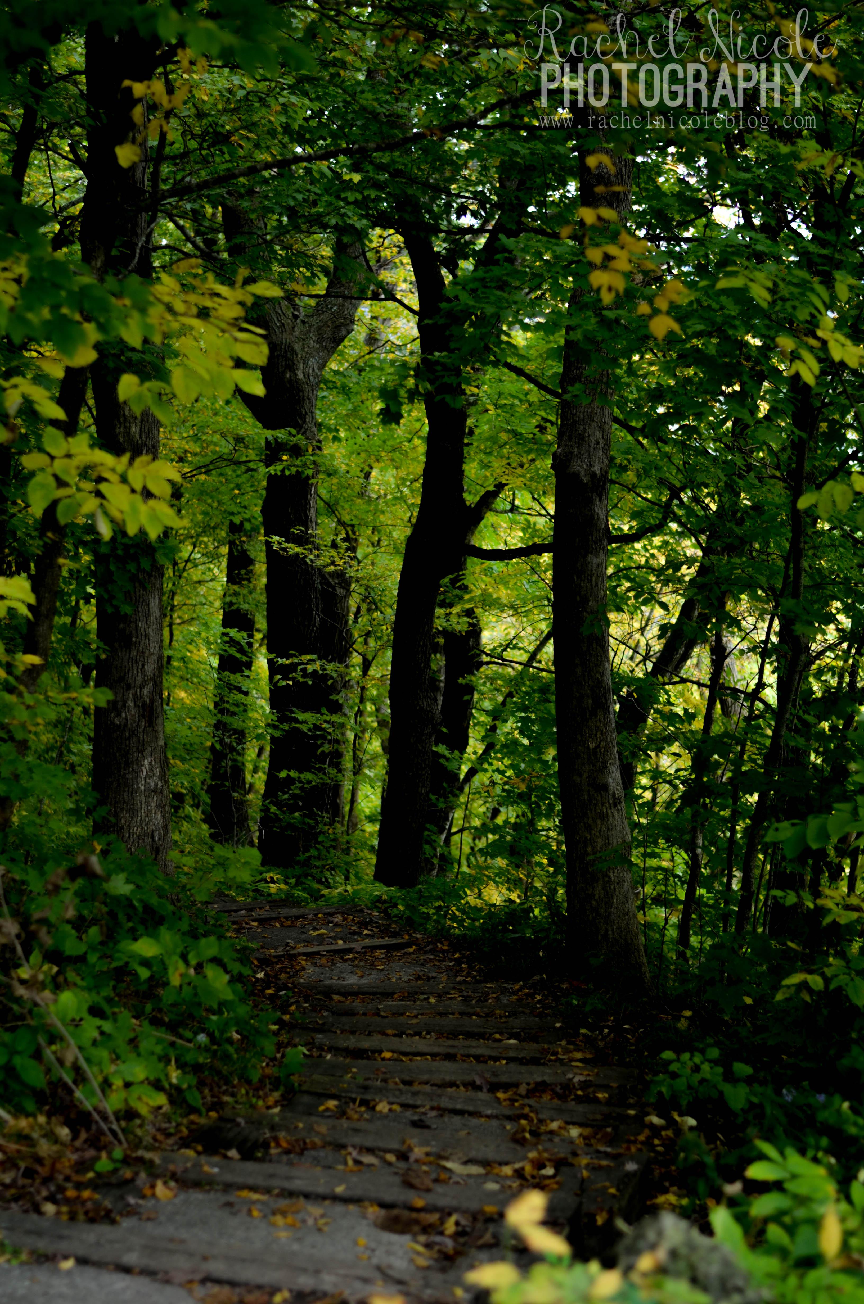 Trail | Challenge