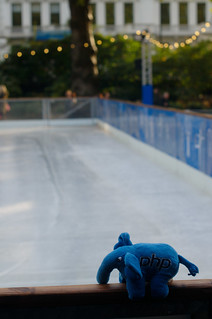 Elephpant tired of the ice skating