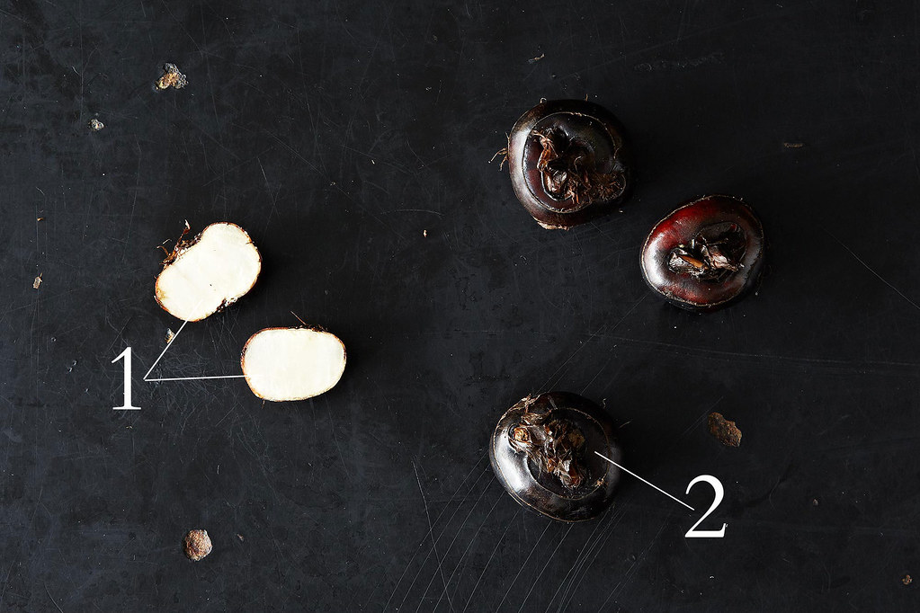 All About Fresh Water Chestnuts, from Food52