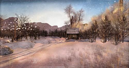 ~ Winter feeling ~