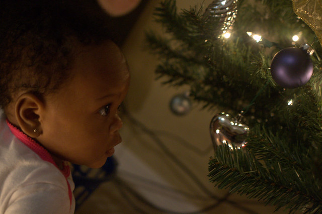Baby loves Christmas trees