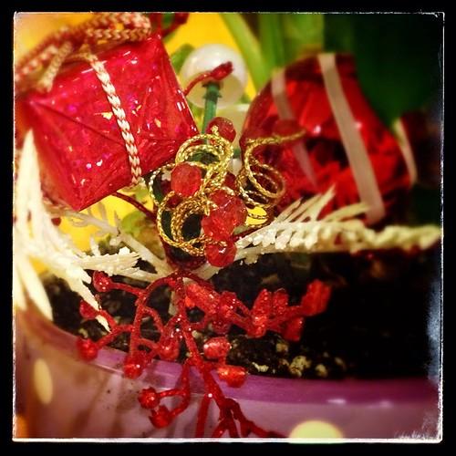 #fmsphotoaday December 22 - Sparkly
