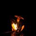 the lantern. by sam_samantha
