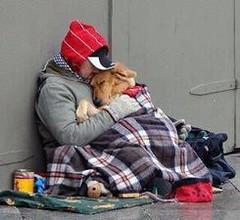 """Un abbraccio """"umano"""" – di Paola Testaferrata"""